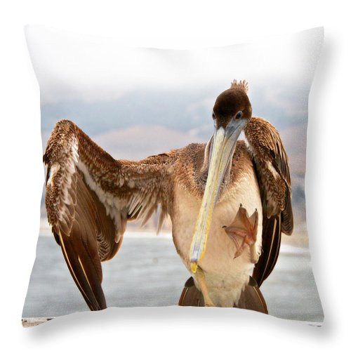 Nature Throw Pillow featuring the photograph A Leg Up, Brown Pelican by Zayne Diamond Photographic