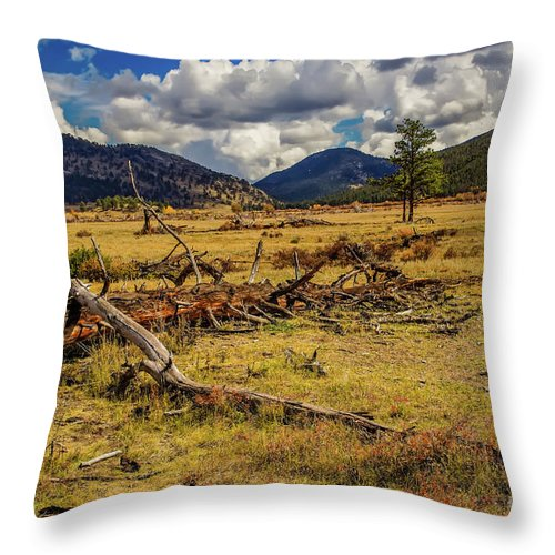 Jon Burch Throw Pillow featuring the photograph A Long Life by Jon Burch Photography