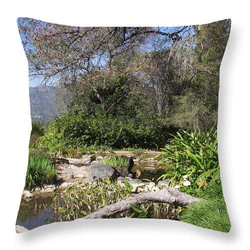 Water Throw Pillow featuring the photograph A Lovely Spot by Natalya Shvetsky