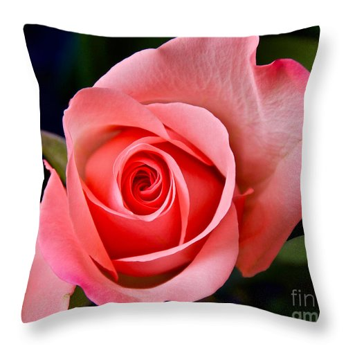 Photography Throw Pillow featuring the photograph A Loving Rose by Sean Griffin