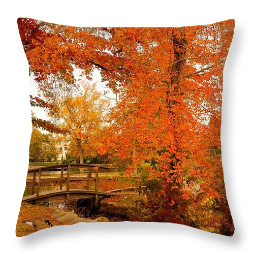 New Jersey Throw Pillow featuring the photograph A Morning In Autumn - Lake Carasaljo by Angie Tirado