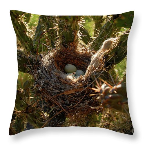 Fine Art Photography Throw Pillow featuring the photograph A Mothers Protection by David Lee Thompson