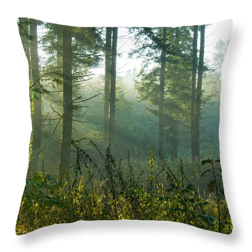 Nature Throw Pillow featuring the photograph A New Day Has Come by Daniel Csoka
