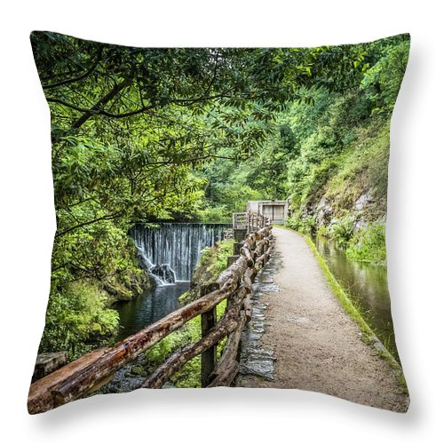 Mazonovo Throw Pillow featuring the photograph A Path Between Two Waters by RicardMN Photography