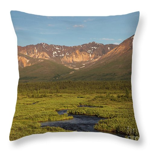 Alaska Throw Pillow featuring the photograph A River Runs Through It by Ursula Lawrence