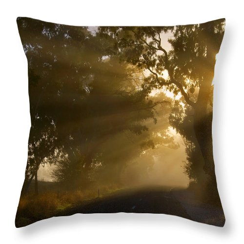 Highway Throw Pillow featuring the photograph A Road Less Traveled by Mike Dawson