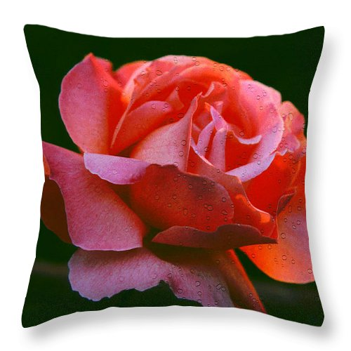 Rose Throw Pillow featuring the photograph A Rose For Rose by Michael Durst
