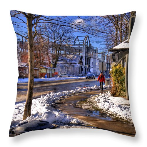 Scenic Throw Pillow featuring the photograph A Sandpoint Winter by Lee Santa