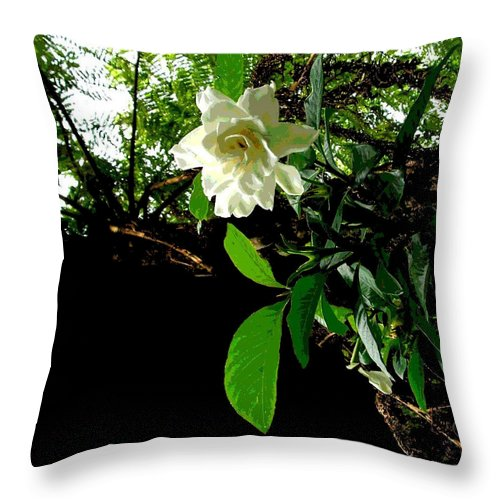 Square Throw Pillow featuring the digital art A Secret Place by Eikoni Images