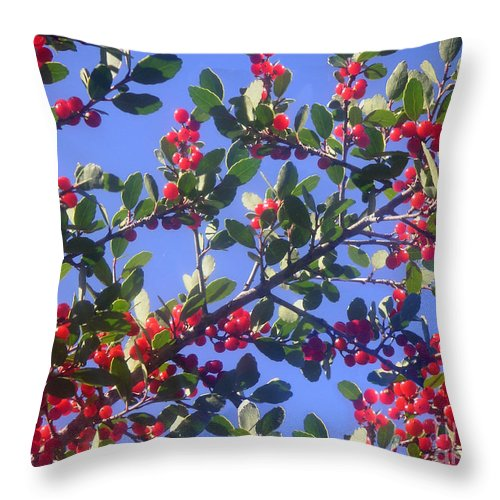 Nature Throw Pillow featuring the photograph A Sky Full Of Holly by Lucyna A M Green
