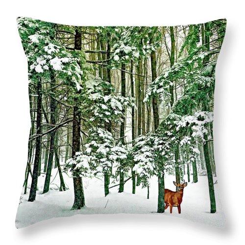 Deer Throw Pillow featuring the photograph A Snowy Day by Steve Harrington