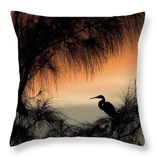 Egret Throw Pillow featuring the photograph A Snowy Egret (egretta Thula) Settling by John Edwards