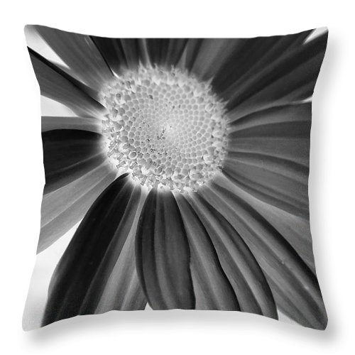 Macro Throw Pillow featuring the photograph A Solo Daisy In Negative by Robert Coon Jr