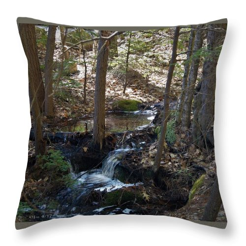 Wods Throw Pillow featuring the photograph A Spring Moment by Jai Cobino