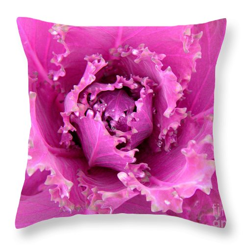 Nature Throw Pillow featuring the photograph A Study In The Shades Of Spring by Lucyna A M Green