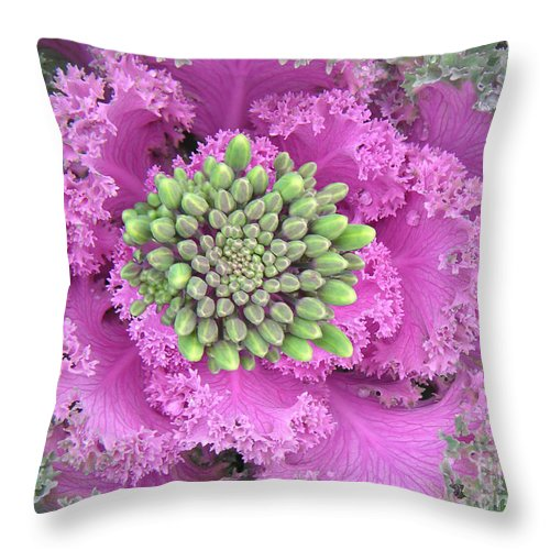 Nature Throw Pillow featuring the photograph A Study In The Shades Of Spring Three by Lucyna A M Green