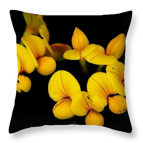 Digital Photography Throw Pillow featuring the photograph A Study In Yellow by David Lane