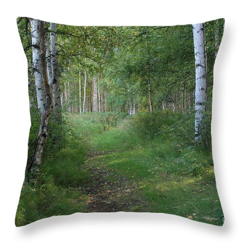 A Suspended Silence Throw Pillow featuring the photograph A Suspended Silence Where The Wild Things Are by Sharon Mau