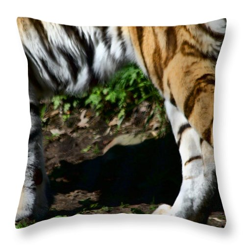 Tiger Throw Pillow featuring the photograph A Tigers Stride by Karol Livote