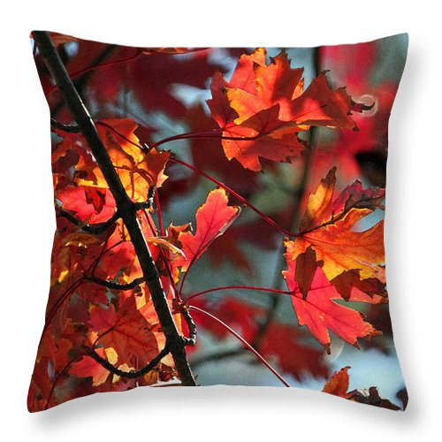 Leaf Throw Pillow featuring the photograph A Time For Every Season IIi In Watercolor by Suzanne Gaff
