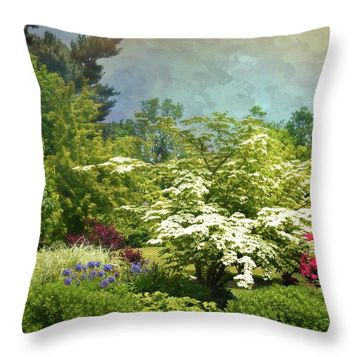 Landscape Throw Pillow featuring the photograph A Trace Of Summer by Diana Angstadt