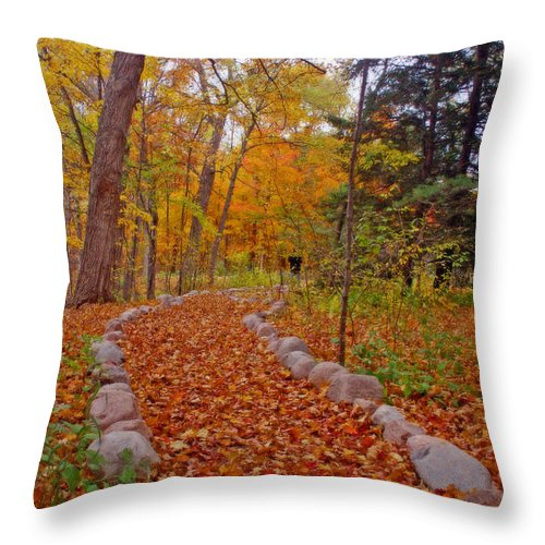 Hawthorn Hollow Throw Pillow featuring the photograph A Walk Along Natures Path by Kay Novy