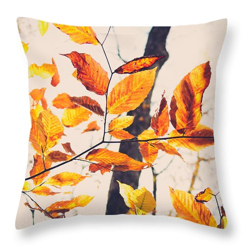 Orange Leaves Throw Pillow featuring the photograph A Walk In Fall by Candida Tate
