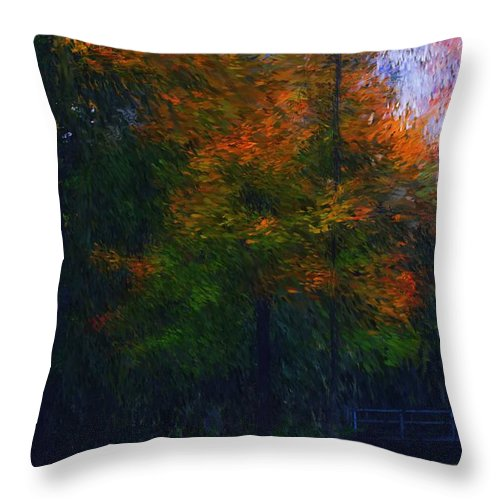 Autumn Throw Pillow featuring the photograph A Walk In The Park by David Lane