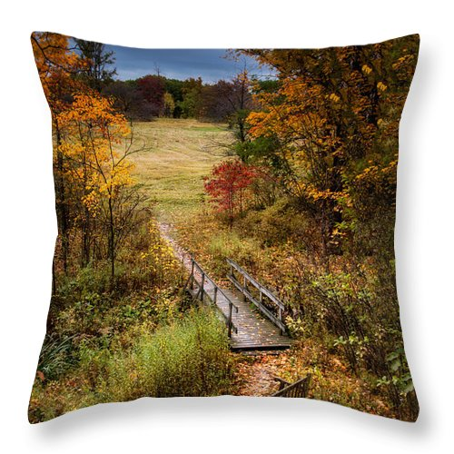 Arboretum Throw Pillow featuring the photograph A Walk In The Park I by Tom Mc Nemar
