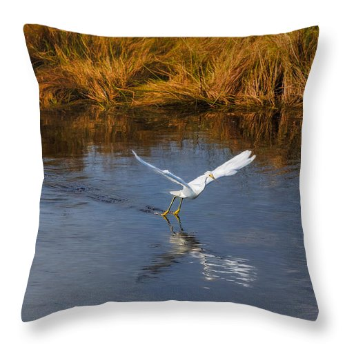 Animals Throw Pillow featuring the photograph A Water Ballet by John M Bailey