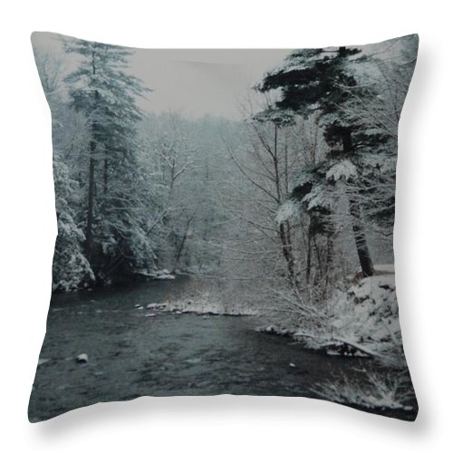 B&w Throw Pillow featuring the photograph A Winter Waterland by Rob Hans