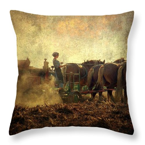 Woman Throw Pillow featuring the photograph A Woman's Work Is Never Done by Trish Tritz