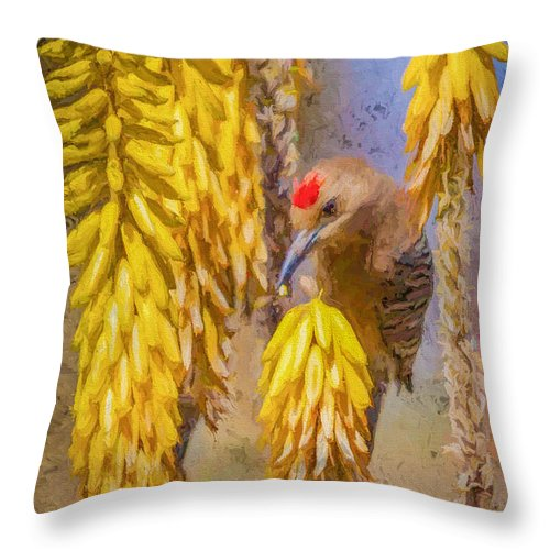 Red Bellied Throw Pillow featuring the painting A Woodpecker In The Aloe by David Wagner