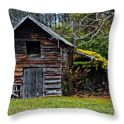 Barn Throw Pillow featuring the photograph A Yellow Cover by Christopher Holmes