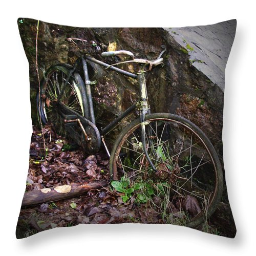 Irish Throw Pillow featuring the photograph Abandoned Bicycle by Tim Nyberg