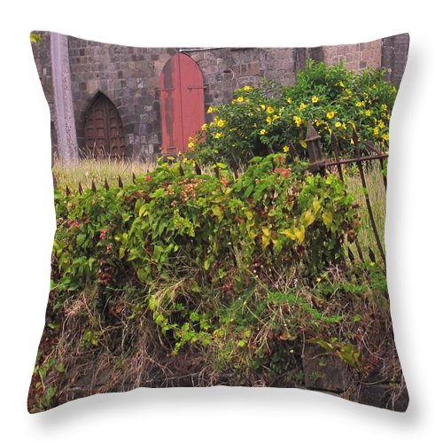 Anglican Throw Pillow featuring the photograph Abandoned Churchyard by Ian MacDonald