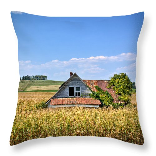 Abandoned Throw Pillow featuring the photograph Abandoned Corn Field House by Douglas Barnett