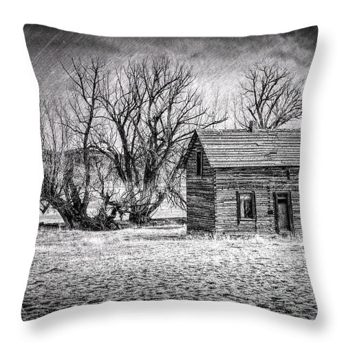 Wyoming Farm House Throw Pillow featuring the photograph Abandoned Farm House by Jack Chamberlin