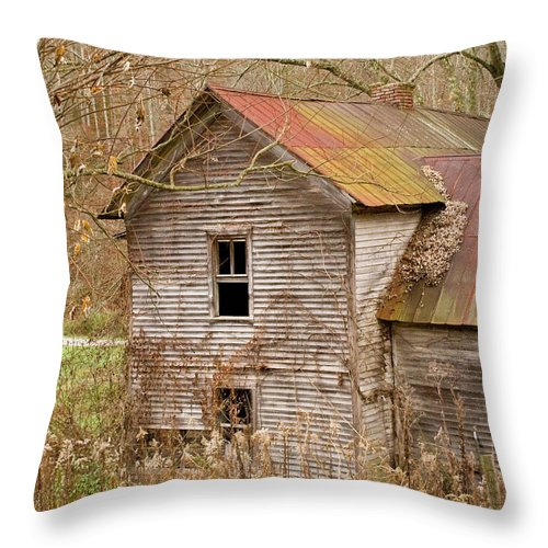 Abandoned Throw Pillow featuring the photograph Abandoned House With Colorful Roof by Douglas Barnett