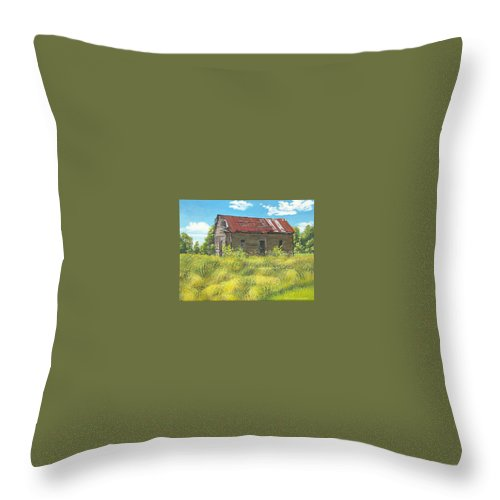 Landscape Throw Pillow featuring the painting Abandoned by Peter Muzyka