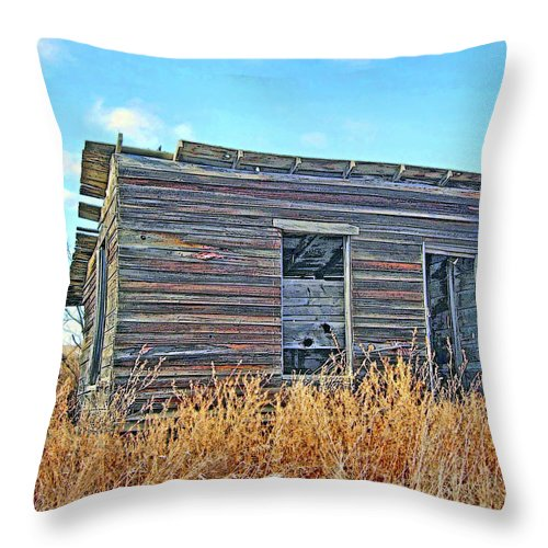 Shack Throw Pillow featuring the photograph Abandoned Shack by Julie Grace