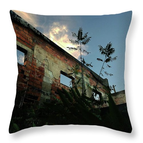 Dilapidated Throw Pillow featuring the photograph Abandoned Theater Oasis by Aaron James
