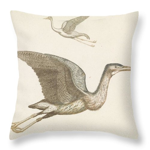 Duck Throw Pillow featuring the painting Above A Flying Crane And Beneath A Flying Pelican, Anonymous, 1688 - 1698 by Artistic Rifki