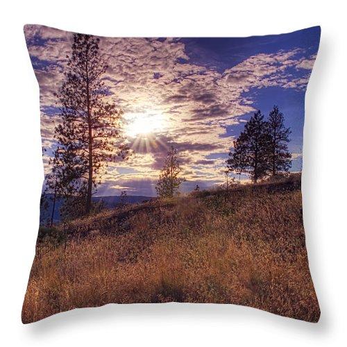 Lake Throw Pillow featuring the photograph Above Lake Okanagan by Paul W Sharpe Aka Wizard of Wonders