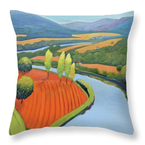 River Throw Pillow featuring the painting Above The Lot by Gary Coleman