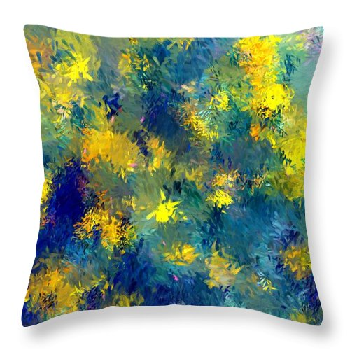 Abstract Throw Pillow featuring the photograph Abstract 06-28-09 by David Lane