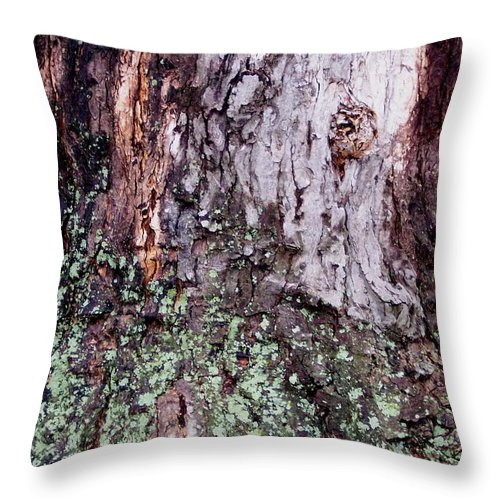 Nature Abstract Modern Green Tree Bark Stripes Pattern Throw Pillow featuring the photograph Abstract Bark 11 by Anna Villarreal Garbis
