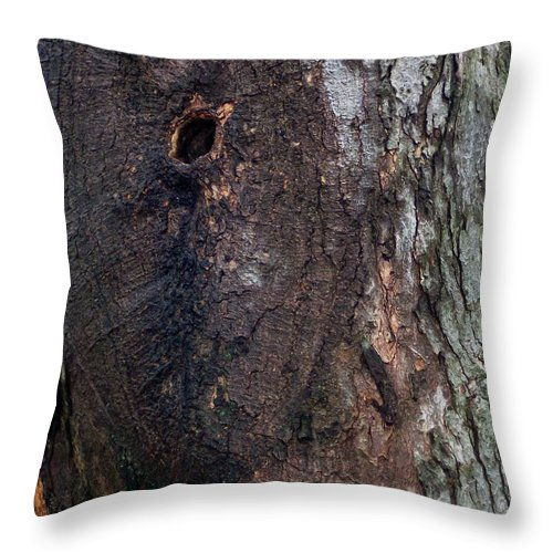 Nature Abstract Modern Green Tree Bark Stripes Pattern Throw Pillow featuring the photograph Abstract Bark 14 by Anna Villarreal Garbis