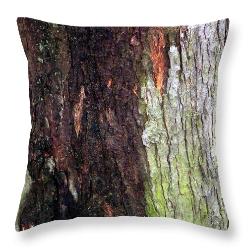 Nature Abstract Modern Green Tree Bark Stripes Pattern Throw Pillow featuring the photograph Abstract Bark 15 by Anna Villarreal Garbis