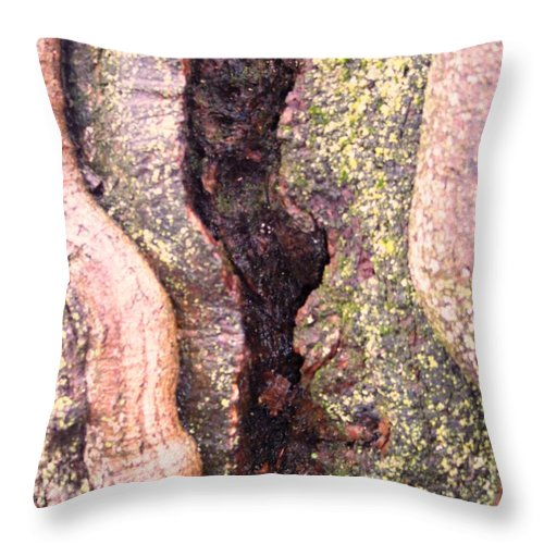 Nature Abstract Modern Green Tree Bark Stripes Pattern Throw Pillow featuring the photograph Abstract Bark 2 by Anna Villarreal Garbis